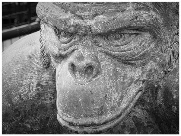 Hartlepool Monkey by DaveRyder