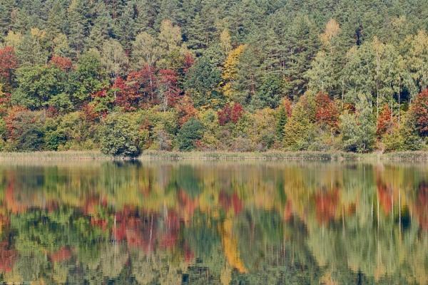Autumn colors by LotaLota