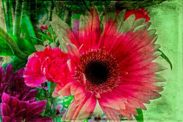 Impressionism - Growing Wild by Peco