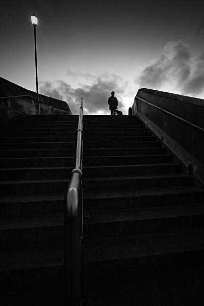 The Watcher by photographerjoe
