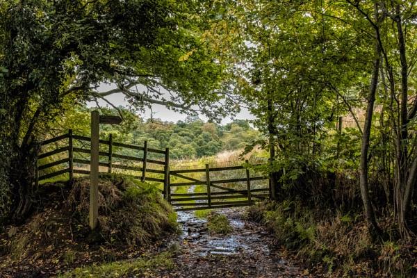 Rural Footpath by mbradley