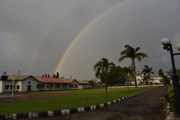 Rainbow by sunie316