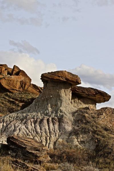 Mushroom rocks by waltknox