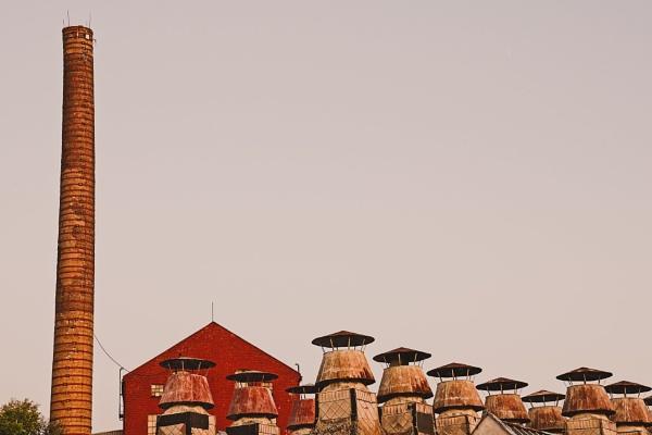 Mosilana 9 by konig