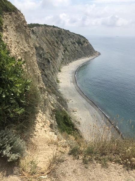 Coast by 100_per_cent_organic