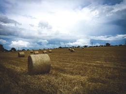 Moody Skies and Hay Bales