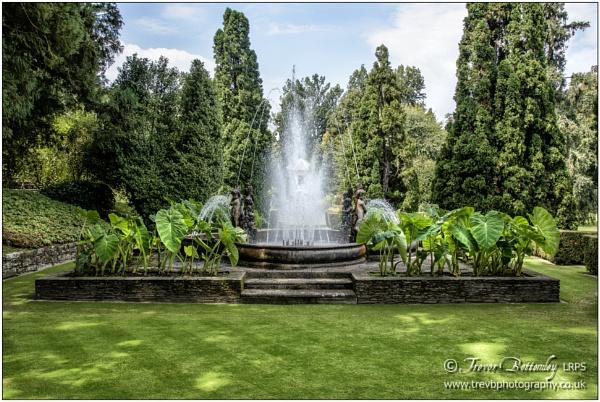 Villa Taranto Giardini Botanici (1) by TrevBatWCC