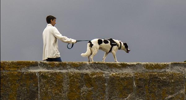 Walking the Dog by Irishkate