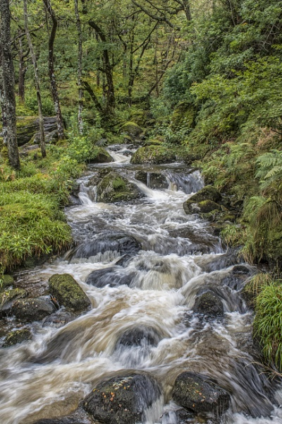 Another shot of the waterfall at Inversnaid Scotland. by sidnox