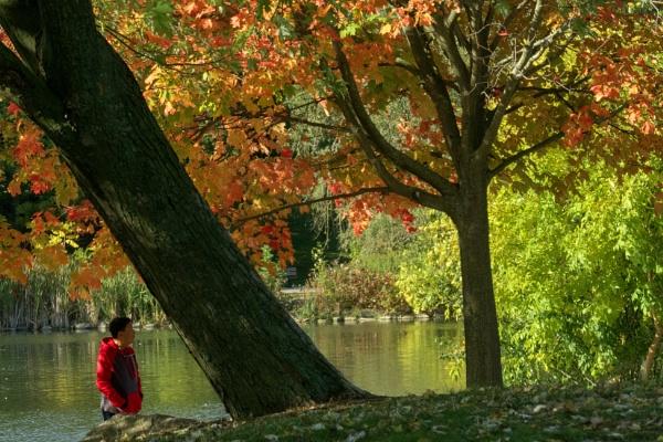 Enjoy the Fall by manicam