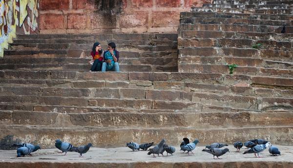 Love Birds by PhilScot