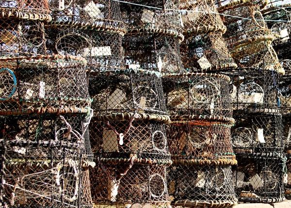 Fishing Baskets by r0nn1e