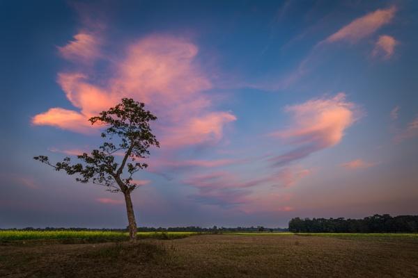 Facing a fierce Sky. by arindomb
