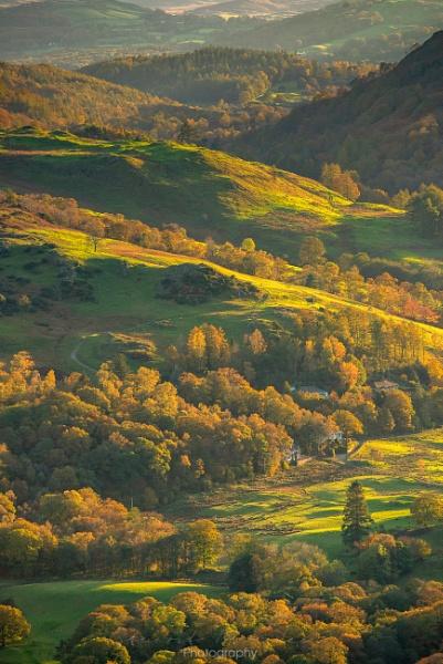 Autumn Colour Scene by Stumars