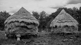 Haystacks on concrete mushrooms (staddle stones)