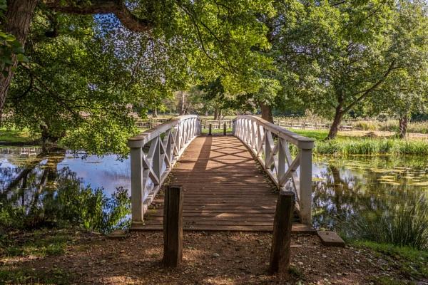 wooden bridge. by drevilescort