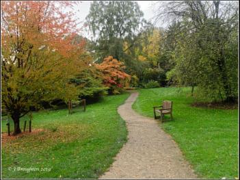 The coming of Autumn in Batsford Arboretum