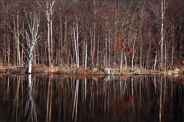 lake louise by carmenfuchs