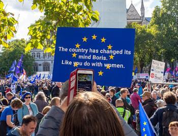 People's Vote Placard