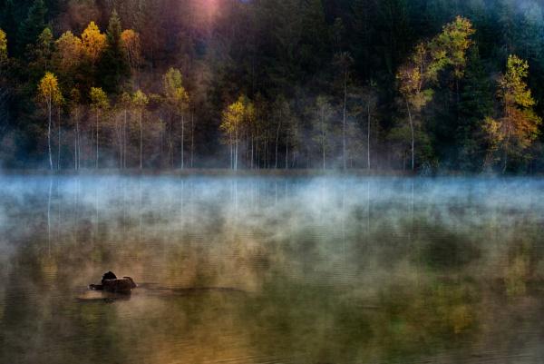 October Feeling by tutye