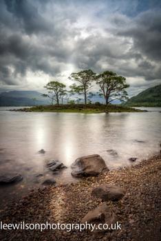 loch maree trees