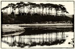 River Otter, Budleigh Salterton, Devon