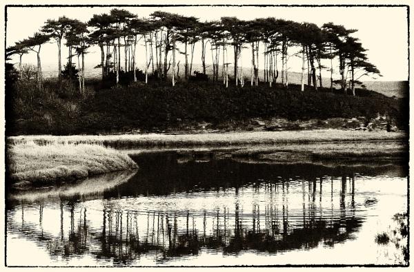 River Otter, Budleigh Salterton, Devon by starckimages