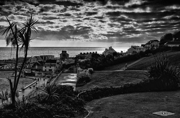 Lyme Regis - Langmoor/Lister Gardens - View towards West by starckimages