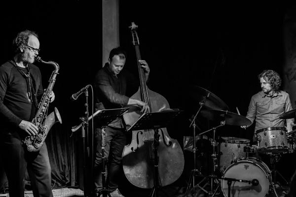 Reuben Bradley Trio (1) by barryyoungnz