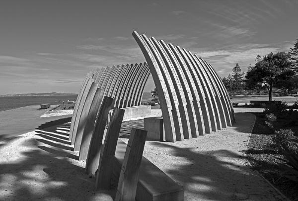 Beach Art - Napier New Zealand by VincentChristopher