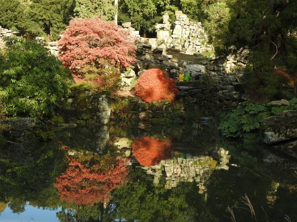 Autumn colour Chatsworh garden by Alan26
