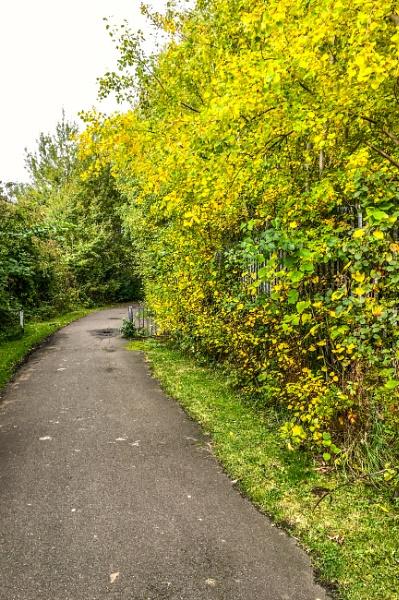 Edinburgh walkway. by Pinarellopete