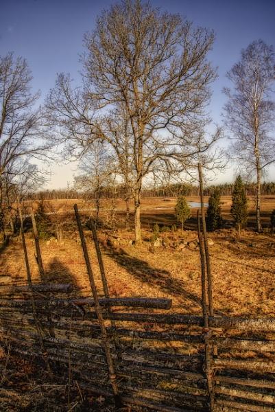 Fence by Leikon