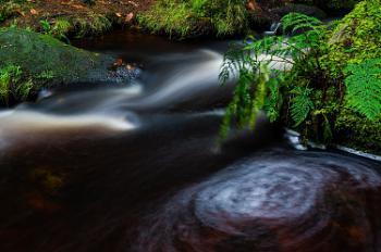 Trails and Swirls
