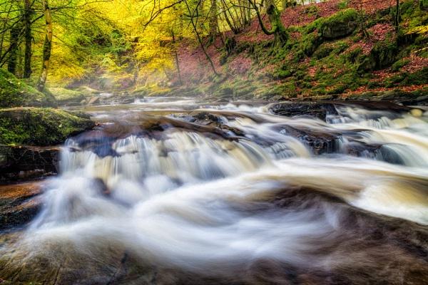 Flowing through Autumn by douglasR