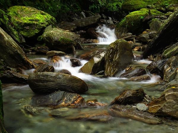 Waiho River 3 by DevilsAdvocate