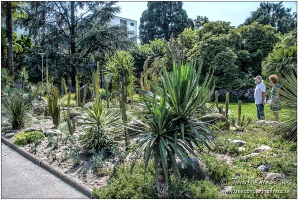 Lakeside Gardens, Locarno by TrevBatWCC