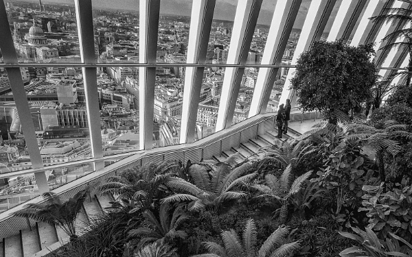 VIEW FROM THE SKY GARDEN by judidicks