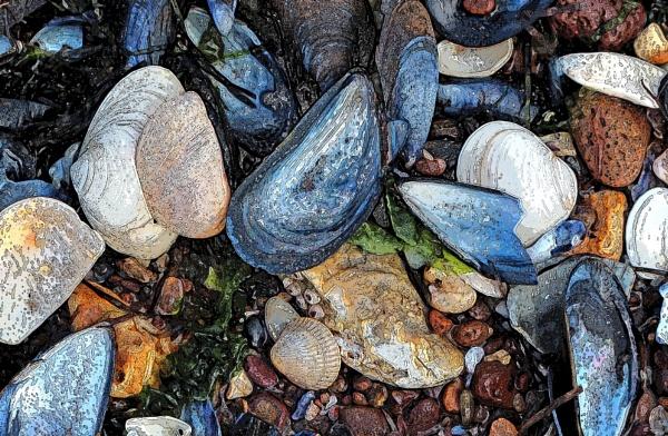 Beach ware by nanpantanman
