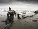 Beach Debris by doverpic
