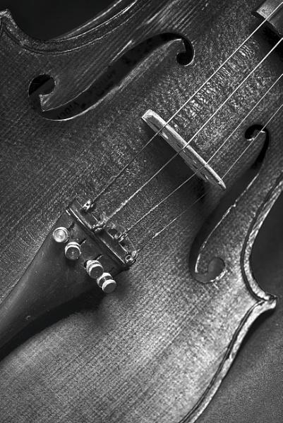 Violin by deavilin