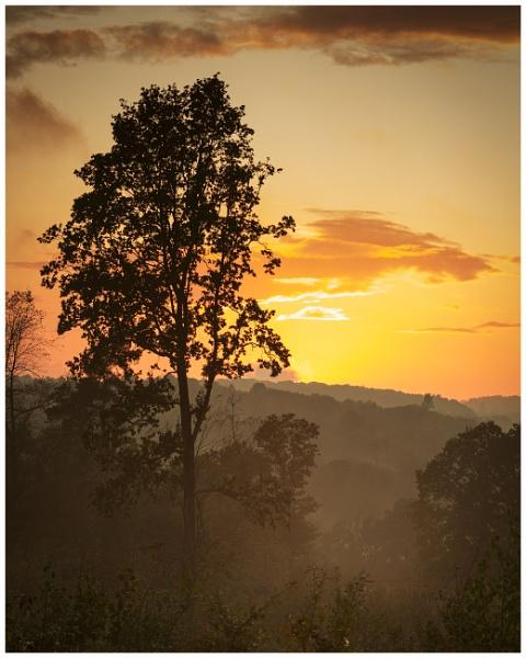 Charnwood Sunset by JelFish