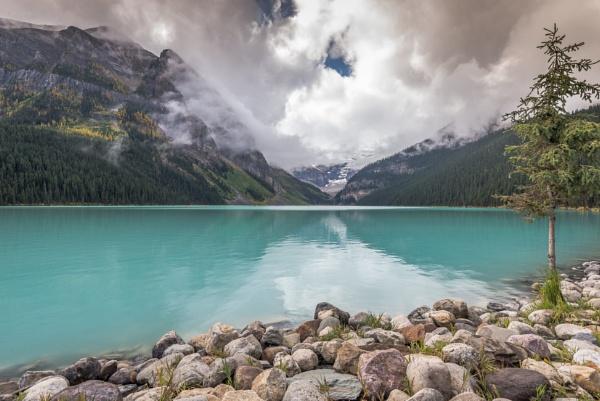 Lone pine lake by Barno123