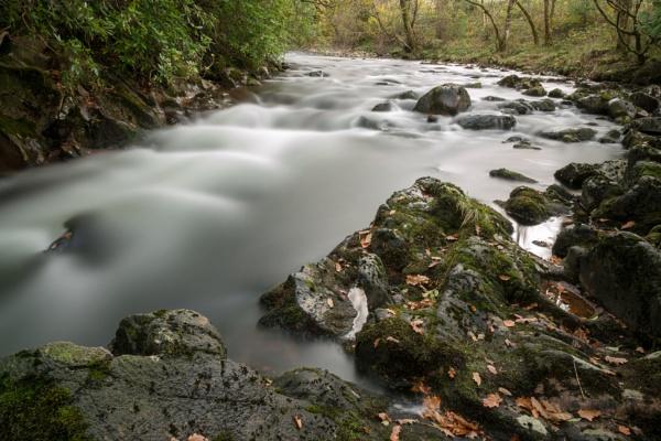 River Esk by steve120464