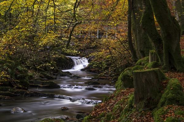 Birks of Aberfeldy Waterfall by Irishkate