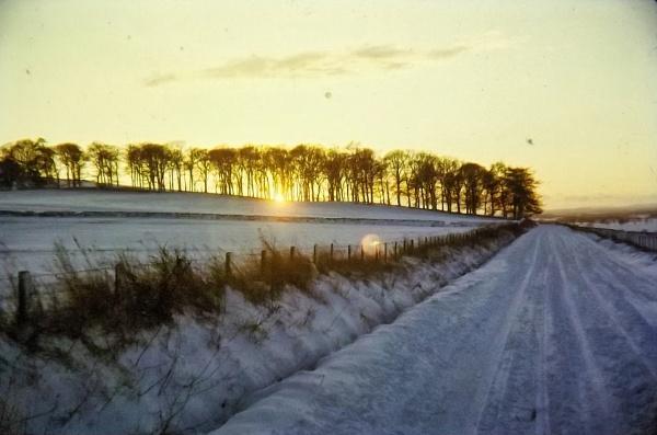 Winter Sunset 1969 by silverscot