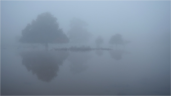 Flood in the mist by fredsphotos