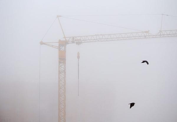 Birds of mist by LaoCe