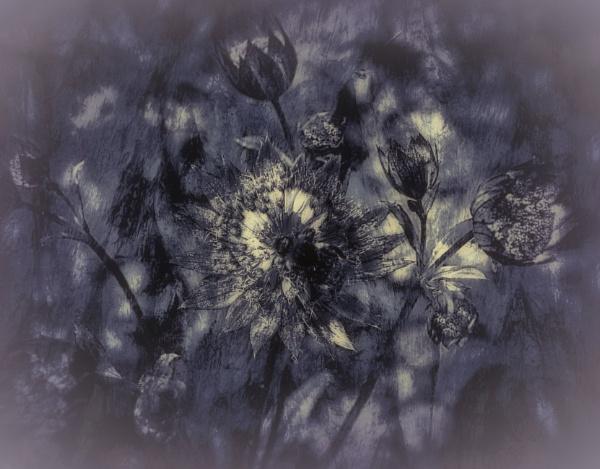 Floral Ensemble by adagio