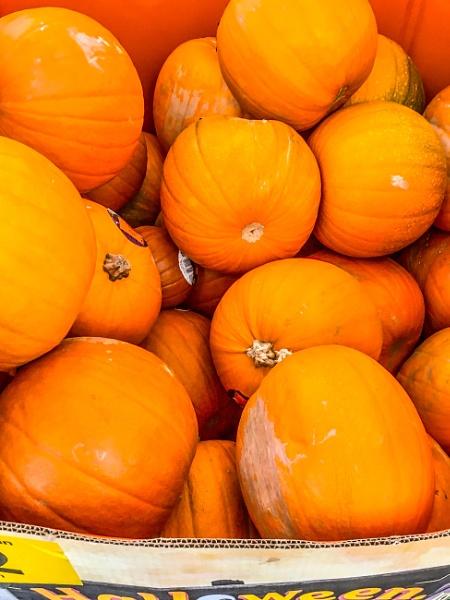 A box of Pumpkins. by Pinarellopete